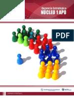 Nucleo 1 APO.pdf