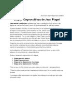 Etapas de Piaget (1)