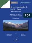 Geología de Los Cuadrangulos de Pachía y Palca Hojas 36-V y 36-x%2c Esc 1 50000%2c 2011