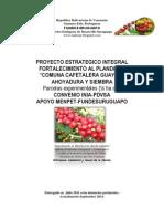 Proyecto Cafe NUDESUR 2014