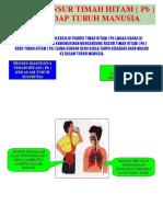 Bahaya Unsur Timah Hitam ( Pb )