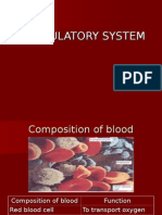 Intervensi Circulatory System