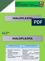 Hialoplasma