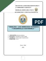 analisis de los derechos humanos y desarrollo sostenible