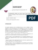Practica-4-Inmuno-eq-2.docx
