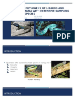 PRESENTACIÓN  the Phylogeny of Lizards and Snakes