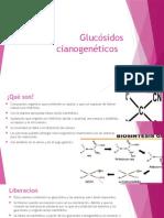 cianoglucosidos