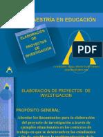 Programa de Maestría-elab. de Proyectos