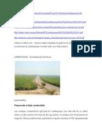 Activ. Eco - Lamba (2)de DiNana