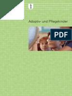 SG-Broschüre «Das Wichtigste in Kürze».pdf