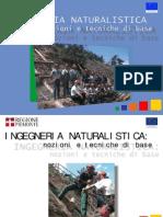 Manuale Ingegneria Naturalistica - Piemonte