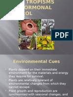 14.1 Plant Tropisms and Hormonal Control