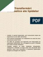Transformări Metabolice Ale Lipidelor