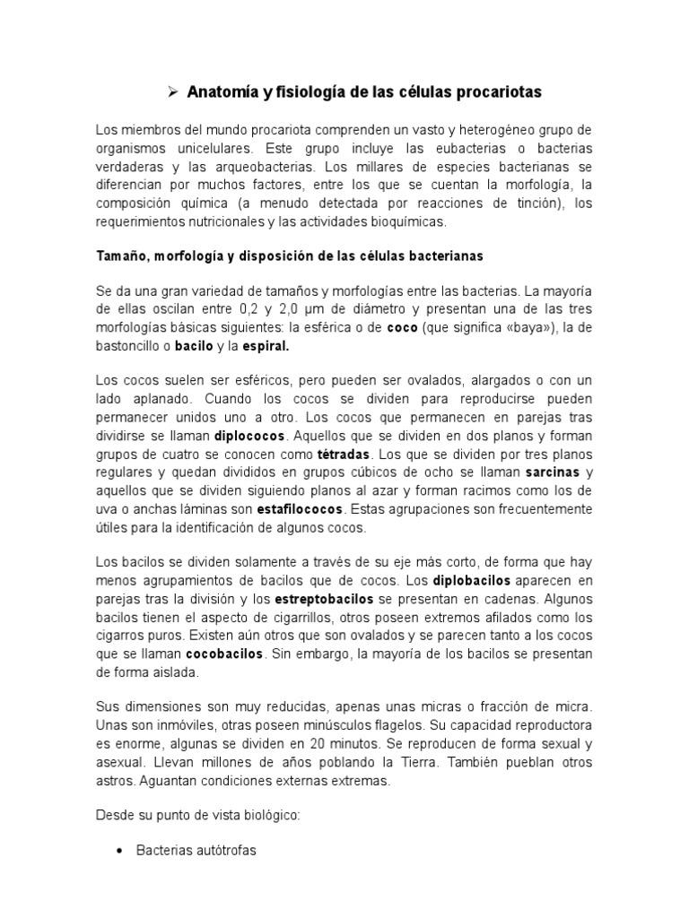 Magnífico Anatomía De Células Colección de Imágenes - Anatomía de ...