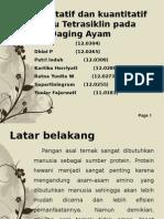 Uji Kualitatif dan kuantitatif Residu Tetrasiklin pada Daging.pptx