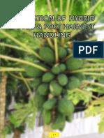 Hybrid Papaya