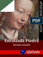 Enraizada Piedra - Abraham González Lara (2015)