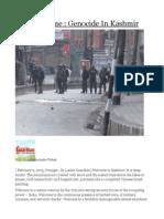 India's Shame Genocide in Kashmir