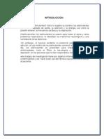 CLASIFICACION DE MEDICAMENTOS_ESTIMULANTES.docx