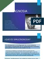 SiMultAgnosia