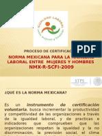 Norma Mexicana Para La Igualdad Laboral Entre Mujeres 27012014