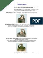 analisisdebujias2 (1).pdf