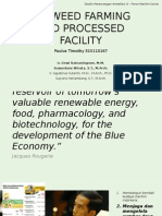 Seaweed Farming and Processed Facility