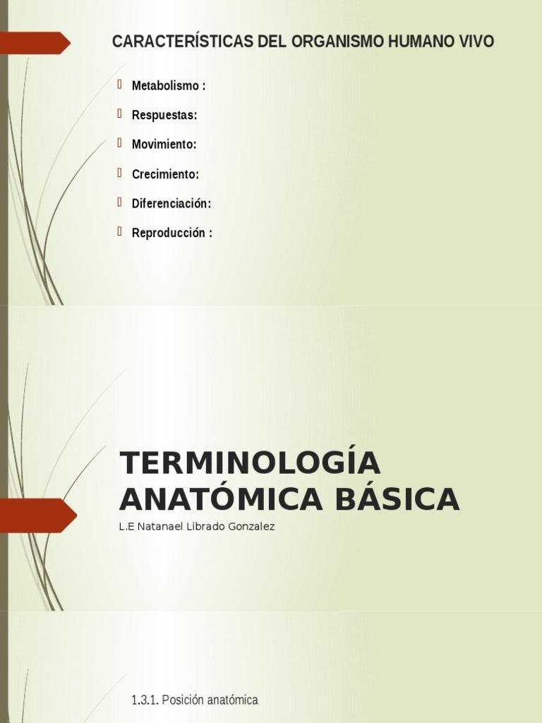 TERMINOLOGÍA ANATÓMICA BÁSICA