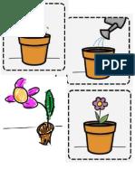 Secuencia Vida de Una Planta