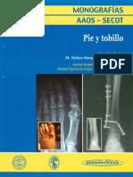 7-2_2006 Pie y Tobillo.pdf Revista