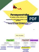 Paramyxoviridae Edited