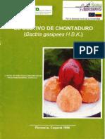 El Cultivo de Chontaduro