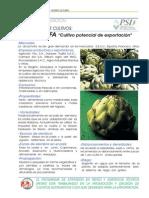 ficha tecnica-Prod.-ALCACHOFA.pdf