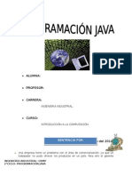 Trabajo Java