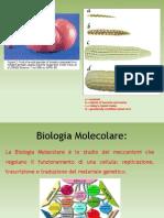 1-Basics of Molecular Biologybreve