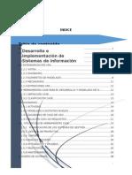 Desarrollo e Implementacion de Sistemas de Informacion