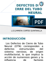 Defectos Del Cierre Del Tubo Neural