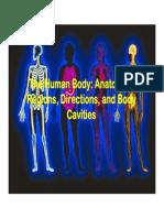 Anatomy - Introduction_terminology