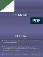 Bab 05 Plantae