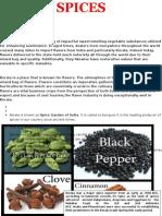 Spices plantation in Kerala