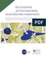 Análisis Planes nacionales de Empresa y DDHH