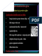 Opste_osobine_gljiva.pdf