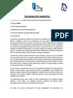 Programa Contaminación Ambiental