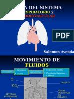Fis - Cardio