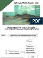 Pakan_ikan2.ppt