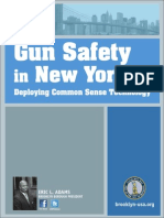 Gun Safety Report