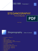 steganographyyellow-101215124507-phpapp02