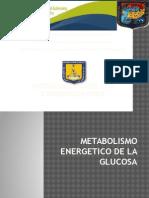 Metabolismo Del Piruvato1