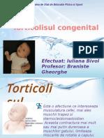torticol.pptx