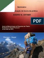 Apresentação ORTNER (1)